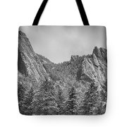 Dusted Flatiron In Black And White  Tote Bag