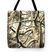 Snow Dusted Limbs Tote Bag