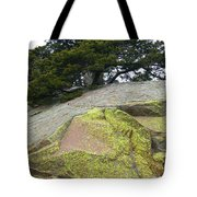 Dusted With Gold Tote Bag