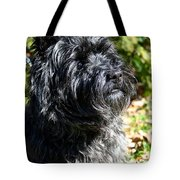 Dusty Tote Bag
