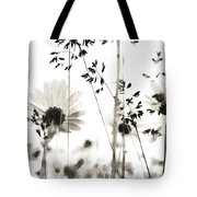 Dusty Travels Tote Bag