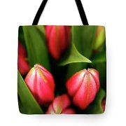 Dutch Bulbs Tote Bag
