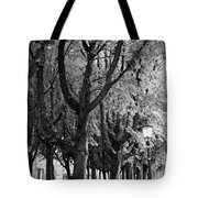 Dutch City Trees - Black And White Tote Bag