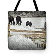 Dutch Friesian Horses Behind A Wooden Fence In A Pasture Tote Bag