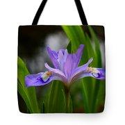 Dwarf Crested Iris Tote Bag