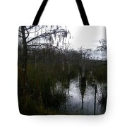 Dwarf Cypress Pool Tote Bag