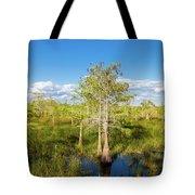 Dwarf Cypress Trees In A Field Tote Bag
