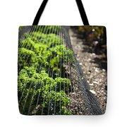 Dwarf Green Curled Tote Bag
