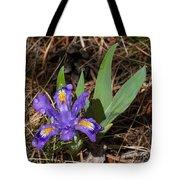 Dwarf Lake Iris Tote Bag