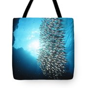 Dwarf Sweepers In Cave Entrance Tote Bag