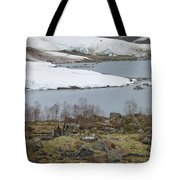 Dwarfed By Nature Tote Bag