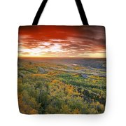 D.wiggett View Of Dry Island, Buffalo Tote Bag
