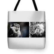 diptych Last hope of Freedom  Tote Bag