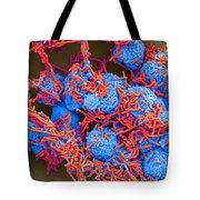 E Coli And Macrophages Sem Tote Bag