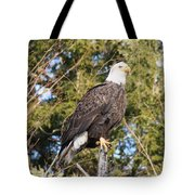 Eagle 1979 Tote Bag