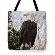 Eagle 1991a Tote Bag