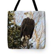 Eagle 5 Tote Bag