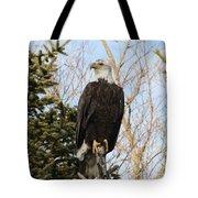 Eagle 6 Tote Bag
