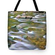 Eagle Creek Oregon Tote Bag