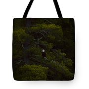Eagle In The Green Tote Bag