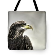 Eagle In The Mist Tote Bag