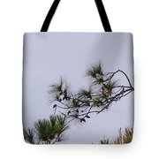Eagle In The Pines Tote Bag