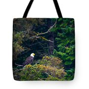 Eagle In Trees  Tote Bag