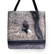 Eagle Landing 2 Tote Bag
