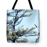 Eagle Nest Tote Bag