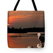 Eagle On Stump Overlooking Water At Sundown Tote Bag