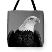 Eagle On Watch Black And White Tote Bag
