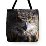 Eagle Owl 2 Tote Bag