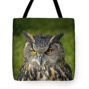 Eagle Owl Tote Bag