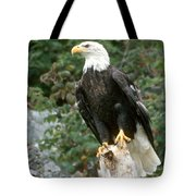 Eagle Perched Atop Stump Tote Bag