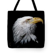 Eagle Portrait II Tote Bag