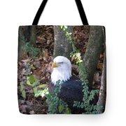 Eagle Pose Tote Bag