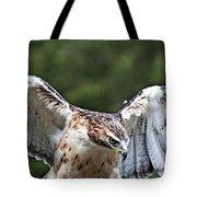 Eagle Wings Tote Bag