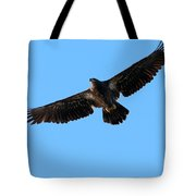 Eagle Wings Tote Bag