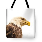 Eagle With Prey Spied Tote Bag by Douglas Barnett