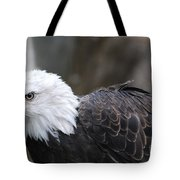 Eagle With Ruffled Feathers Tote Bag