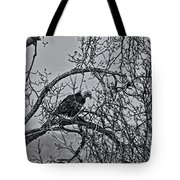 Eagles Along The Mississippi 2 Tote Bag