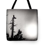 Eagles And Old Tree In Sunset Silhouette Tote Bag