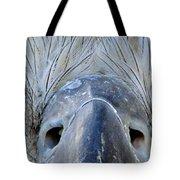 Eagle's Eyes Tote Bag