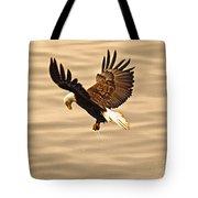 Eagles Pause Tote Bag