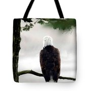 Eagles View  Tote Bag