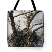 Eagles Watchful Eye 2 Tote Bag