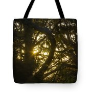 Ear Drum Tote Bag