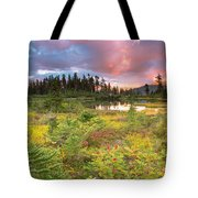 Early Autumn Meadow Sunset At Mt Baker Tote Bag