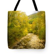 Early Autumn On Seneca Creek Wv Tote Bag