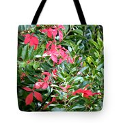 Early Autumn Tote Bag